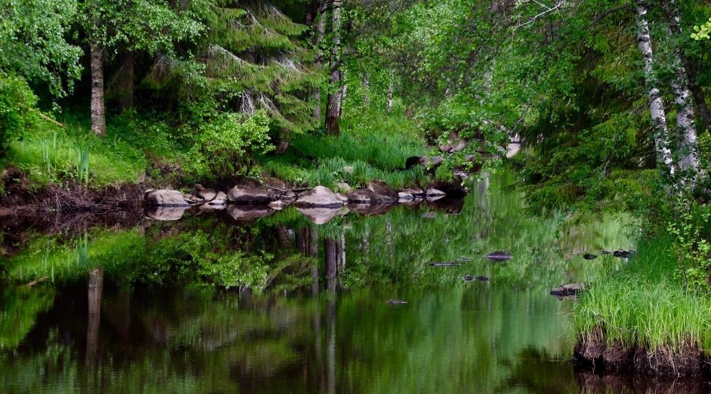 Luontomaisema Seesteinen maisema Luonnonhenget Saaga Saarnisola Luonnonpakanan verkkolehti Luonnonnoita Luontomystiikka Luontohenkisyys