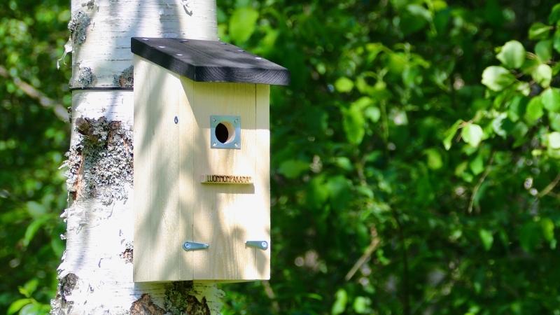 Luonnonpakana Linnunkoti Linnunpönttö Kolmas Silmä Luonnonpakanan verkkokauppa
